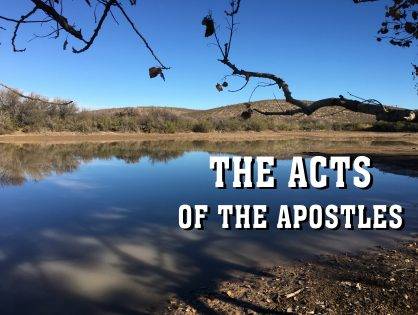 Men's Bible Study on ACTS (2013-03-12 to 2013-10-01)