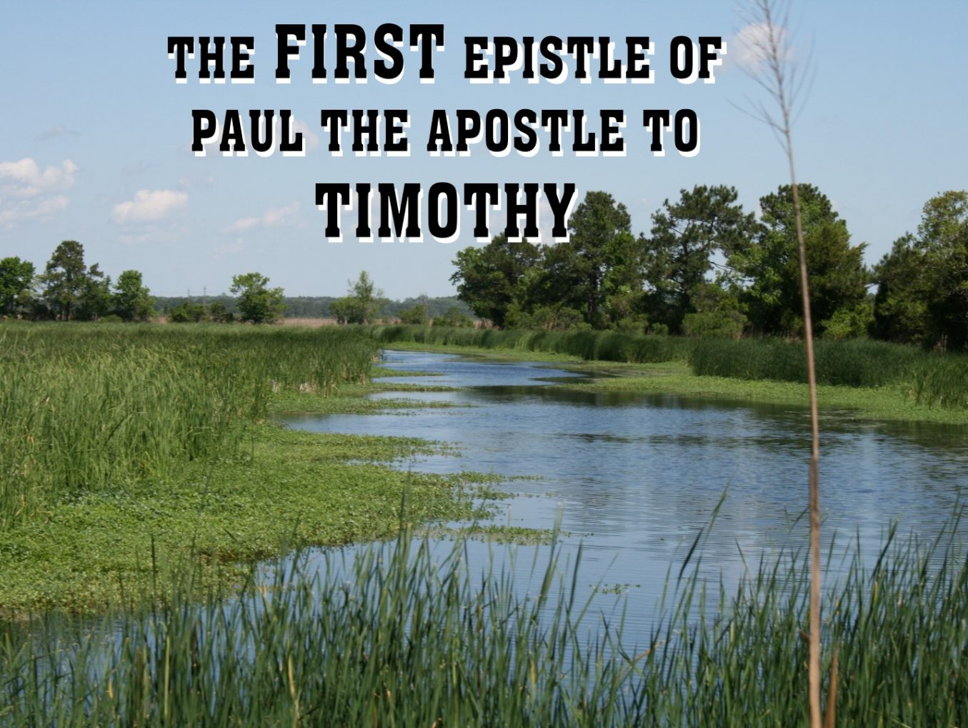Men's Bible Study on 1 TIMOTHY (2011-12-13 to 2012-02-28)