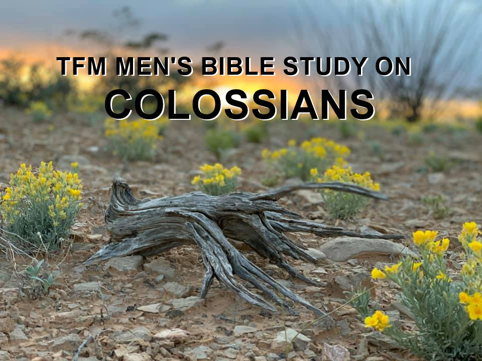 Men's Bible Study on COLOSSIANS (2014-08-19 to 2014-09-16)