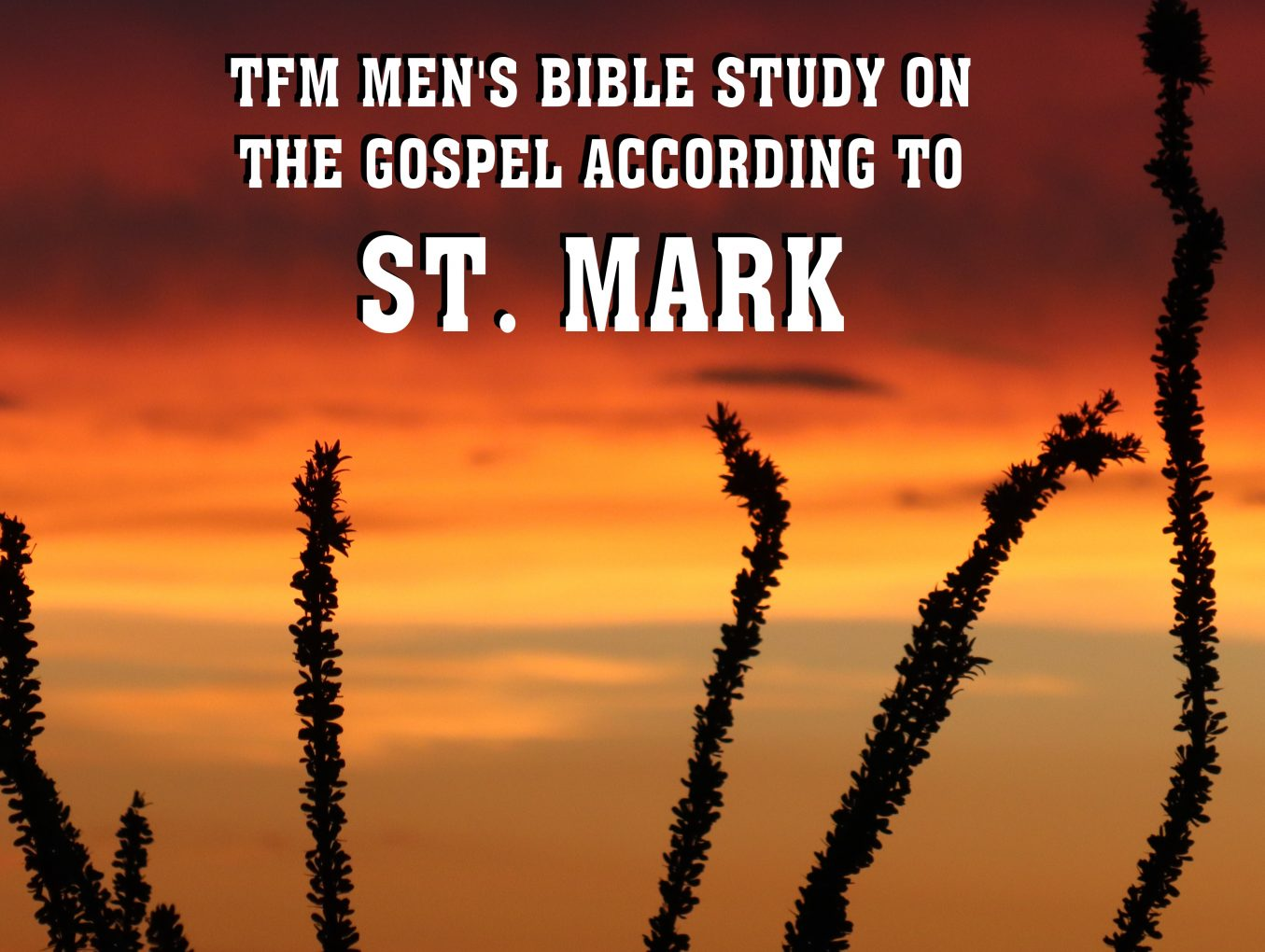 Men's Bible Study on MARK (2016-01-19 to 2016-06-14)