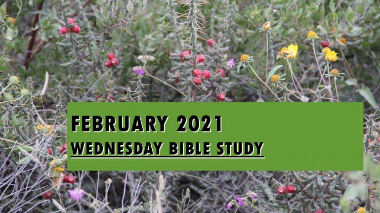 February 2021 Wednesday Bible Studies