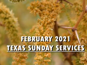 February 2021 Texas Sunday Services