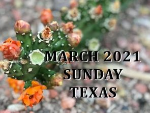 March 2021 Texas Sunday Services