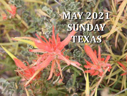 May 2021 Texas Sunday Services